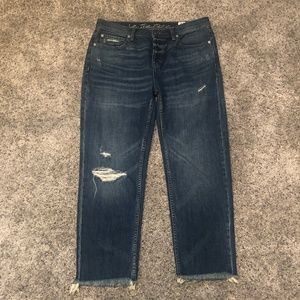 Free People We the Free Low Rise Distressed Jeans